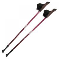 Палки для скандинавской ходьбы TRAMP Fitness (TRR-011)